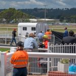 Tasracing staff tend to Douglas after the gelding crashed into the outside barrier during race three on the Devonport Cup program. Picture: Simon Sturzaker.